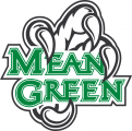 North Texas Mean Green 2005-Pres Alternate Logo 04 decal sticker