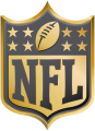 National Football League 2015 Anniversary iron on transfer