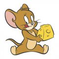Tom and Jerry 6