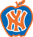 New York Knicks 1979 Alternate Logo iron on transfer