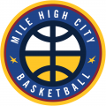 Denver Nuggets 2018-19-Pres Alternate Logo decal sticker